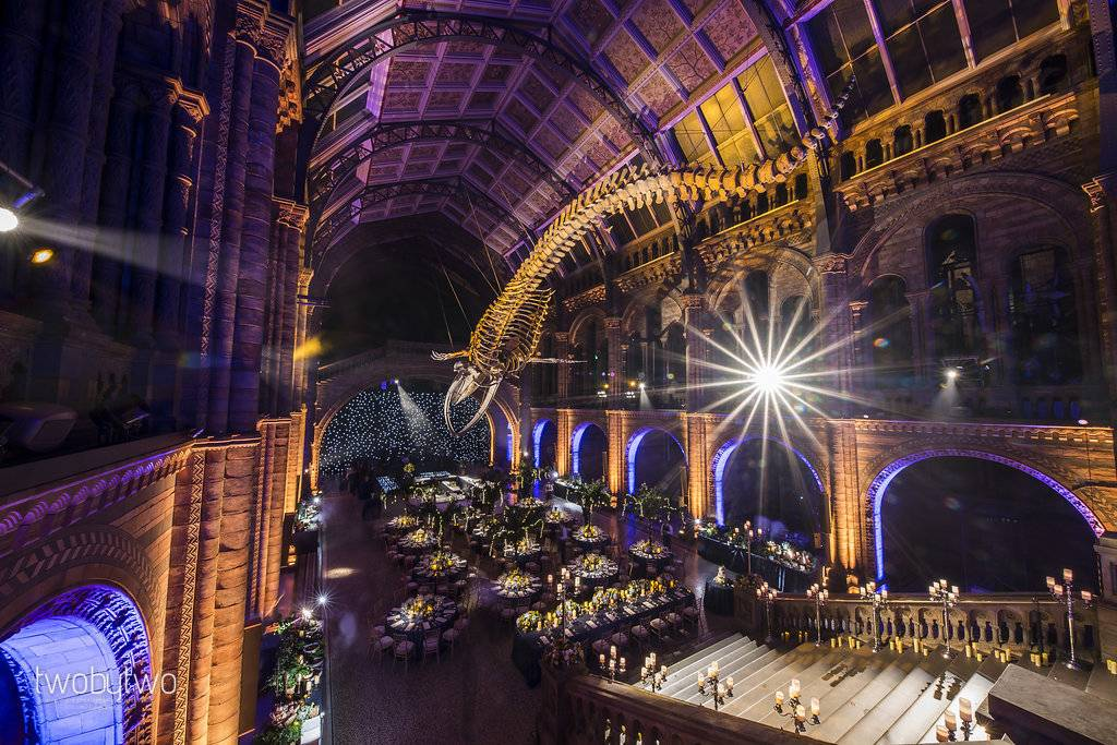 The Natural History Museum, Luxury wedding planner at the Natural History museum, Luxury London wedding venues, Luxury wedding planner, Luxury London event planner